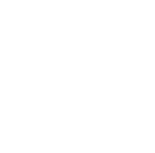 White lifesaver icon